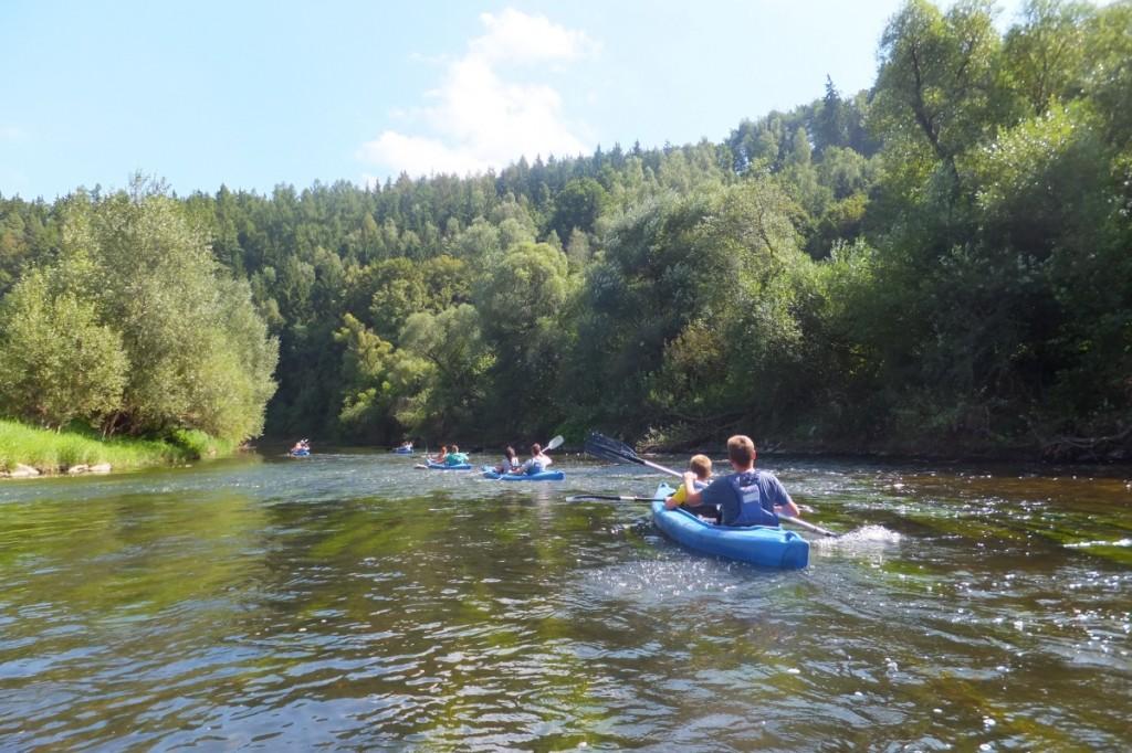 Kayaks - 1