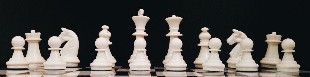 PGS Software Man Vs Machine Chess